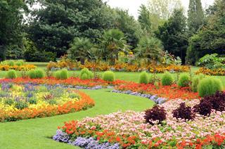 VP Gardens