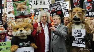 Cameron backs down over fox-hunting vote